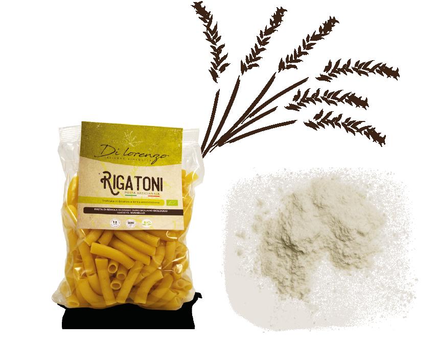 Azienda biologica di lorenzo della provincia di trapani. Produciamo farine da grani antichi siciliani, pasta ed olio extravergine di oliva.