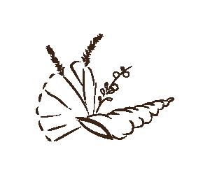 Azienda biologica di lorenzo di Castelvetrano, provincia di Trapani. Produciamo farine da grani antichi siciliani, pasta ed olio extravergine di oliva.