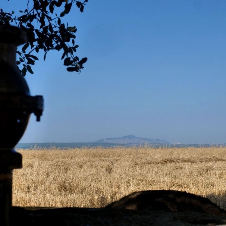 Scorci dalla tenuta di lorenzo