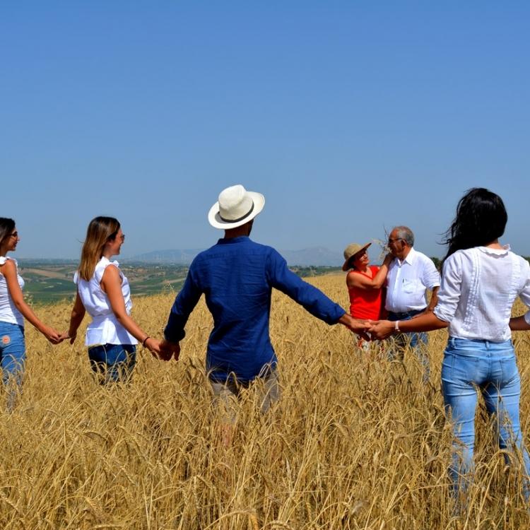 I nostri campi di grani antichi Siciliani. Di Lorenzo